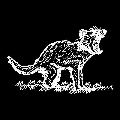 tasmania tiger (1)